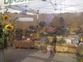 2003_Gewerbeausstellung-Grüningen_031b
