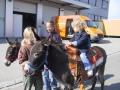 2003_Gewerbeausstellung-Grüningen_031f
